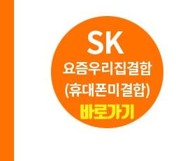 SKBA1.jpg